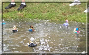 e Spanish Oaks Country Club in Austin, Texas does a CelebriDucks duck